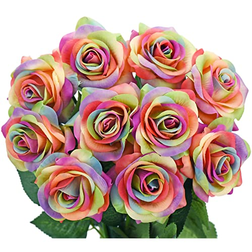 rainbow rose amazon co uk