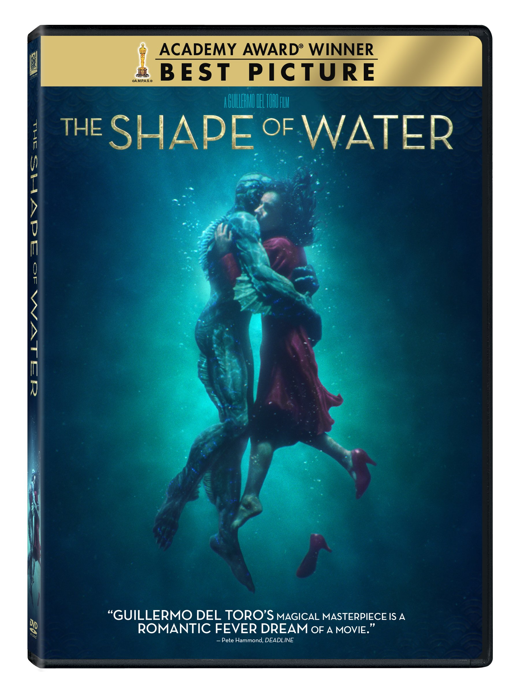 DVD : The Shape Of Water (Widescreen, Dubbed, Subtitled, Dolby, AC-3)