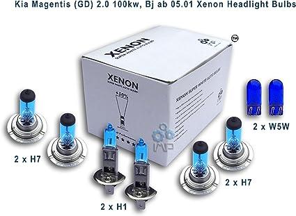 Xenón efecto bombillas coche H1 para faros H7 H7 W5 W, (8 unidades): Amazon.es: Coche y moto