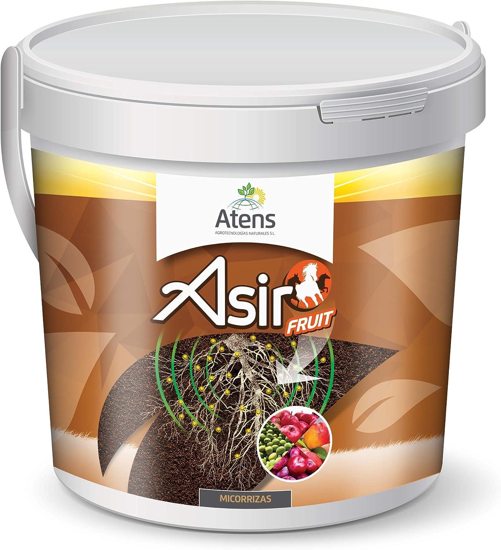 Atens Asir Fruit - Micorrizas y Trichodermas - 50 Pastillas: Amazon.es: Jardín