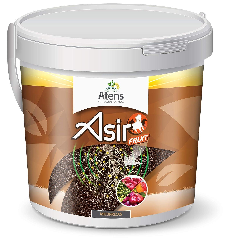 Atens Asir Fruit - Micorrizas y Trichodermas - 50 Pastillas ...