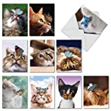 10 Note Cards with Envelopes - Assorted 'On The
