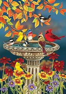 Briarwood Lane Fall Birdbath Floral Garden Flag Cardinals Bluebird 12.5