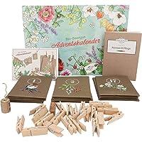Bio-Samen-Adventskalender 2019 - Bunte Wildblumen, Stauden & Sommerblumen