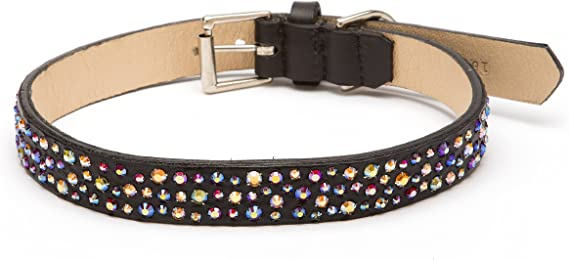 Bling Bling Bling Straight Dog Collar with Crystals | Amazon