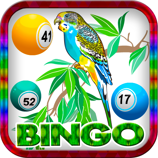 (Tropical Feather Chick Bingo Free Bonus)