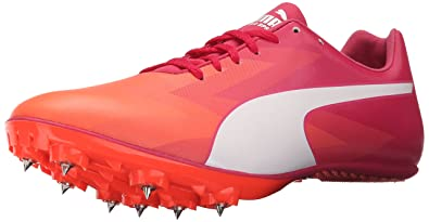 puma evospeed rose