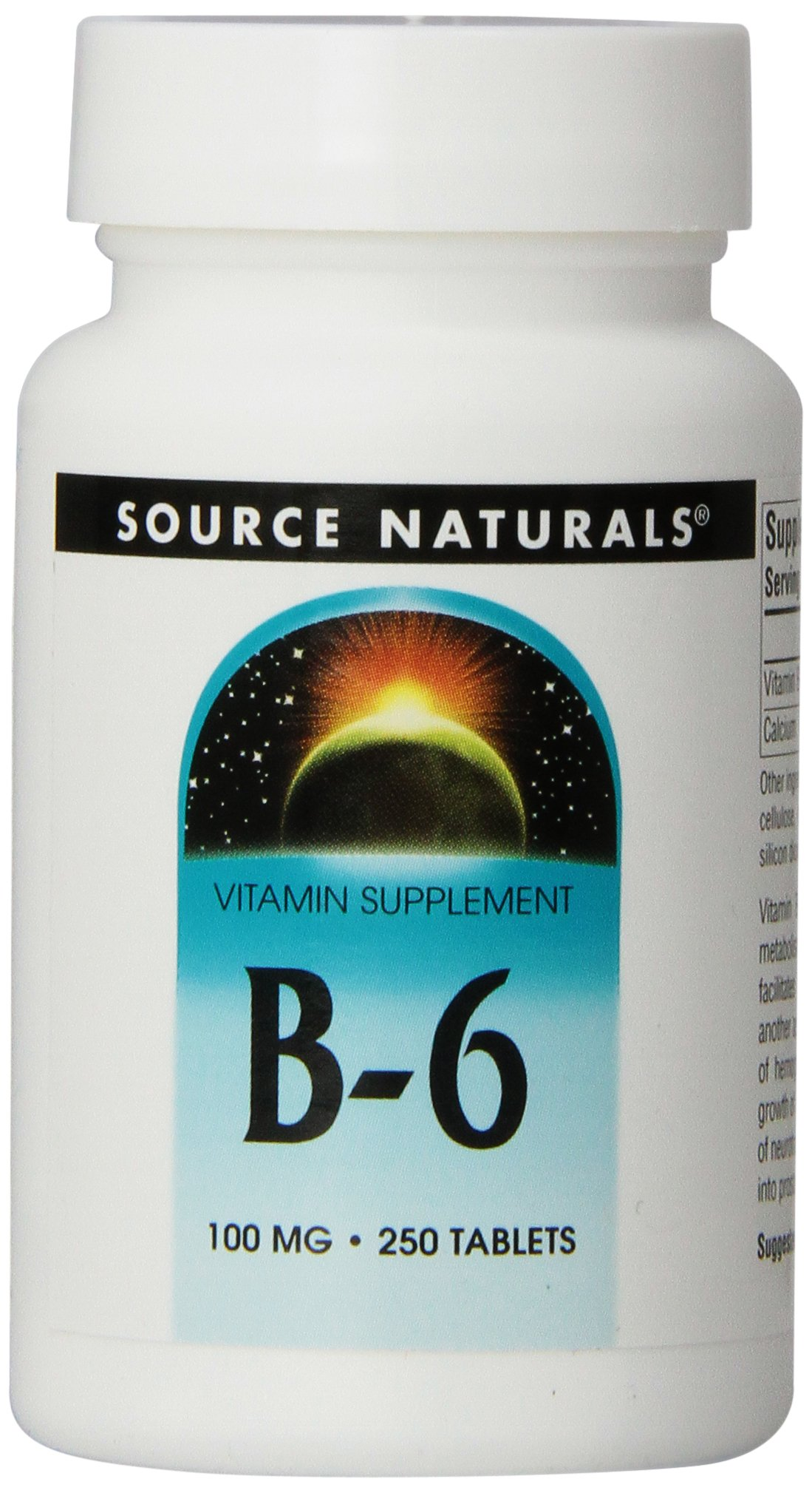 Source Naturals Vitamin B-6 100mg, Immune System Support, 250 Tablets (Pack of 3)