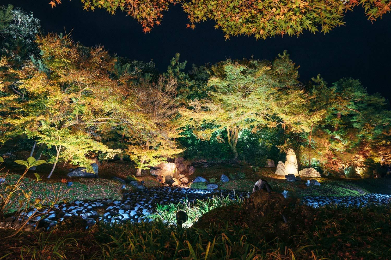 IP66 Waterproof Garden Yard Trees Flags Pathway Lights Warm White 8pack 950LM, 3500K 16W LED landscape light Outdoor Landscape Spotlights with Spike Stand 12V Low Voltage landscape lighting