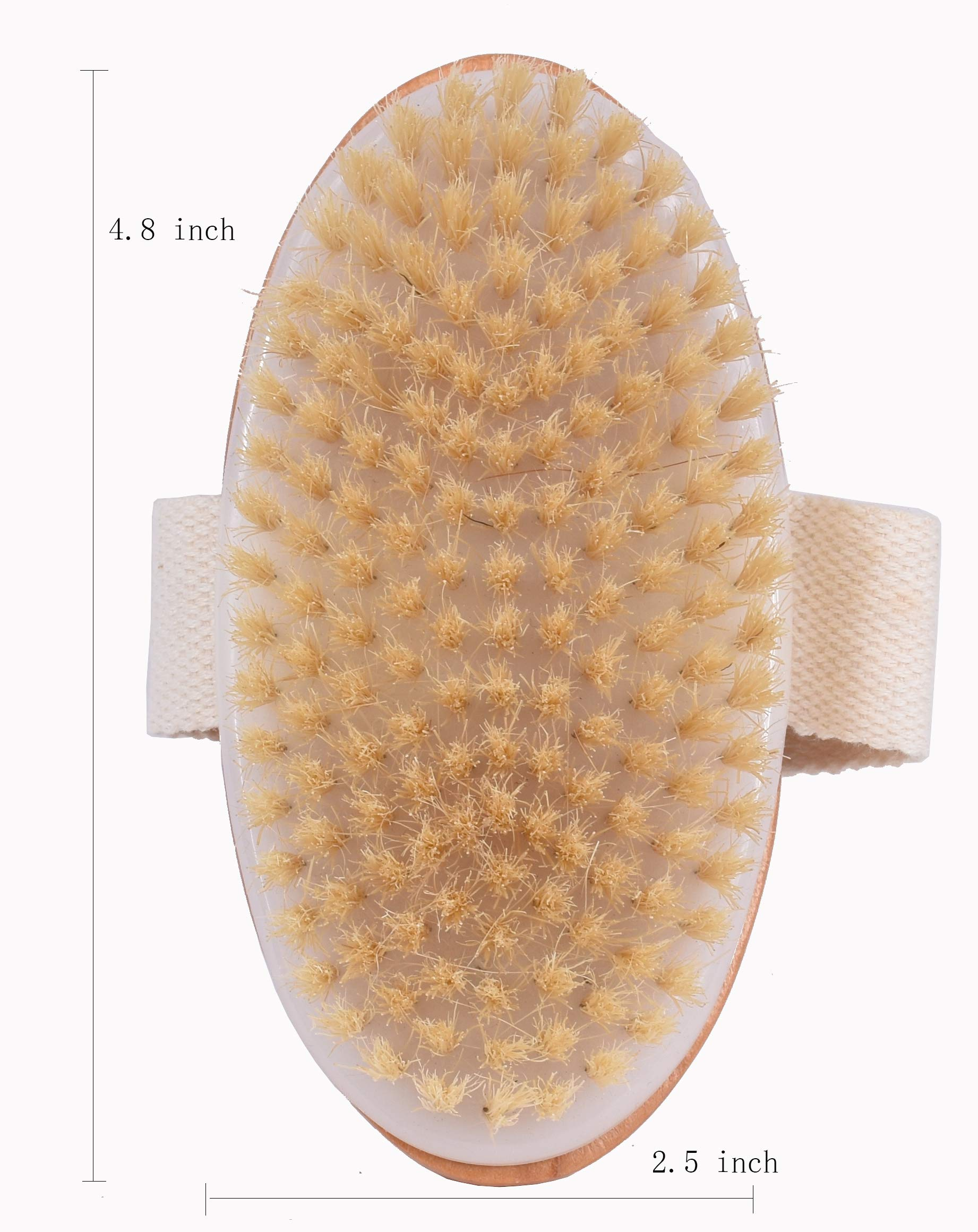 Dry Bath Body Brush Back Scrubber, Improves Skin\'s Health, 100% Natural Bristles Body Massager, Perfect for Exfoliating, Detox and Cellulite, Blood Circulation, Good for Health and Beauty