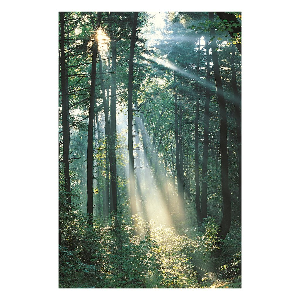 Homyl Modern Indoor Outdoor Wall Decor 3D Hanging Tapestry Beach Towel Forest Sunshine Series - A