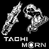Rocinante Tachi Ship (The Expanse Inspired) Decals