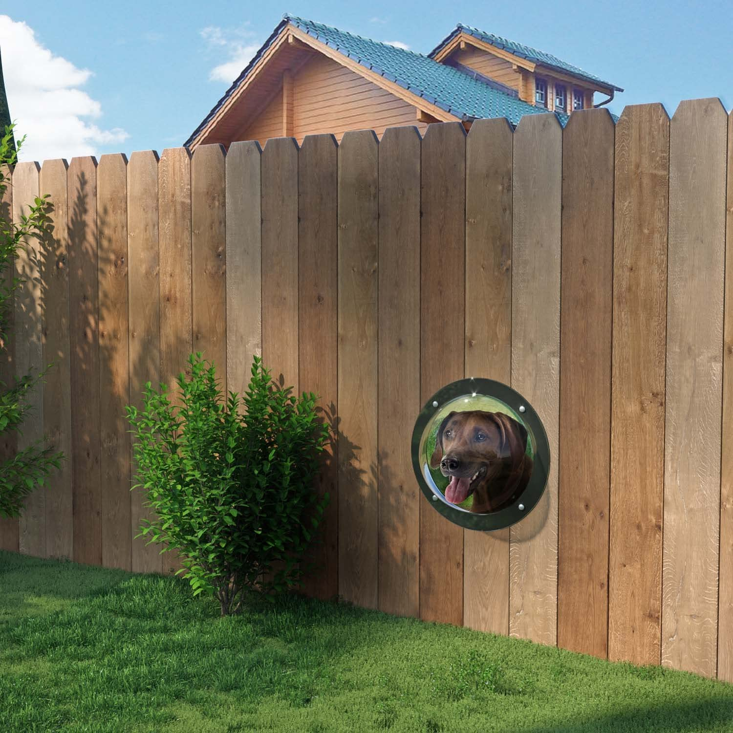 A Porthole Made of Acrylic Glass in 2 colours also for Doghouse Kennel Hut /& Playhouse Gardenscout The Pet Fence Bubble Window for Your Dog Cat or Child