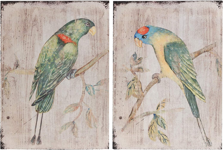 A&B Home Antiqued Wood Art Parrots, 2-Piece Set Wall Decor, One