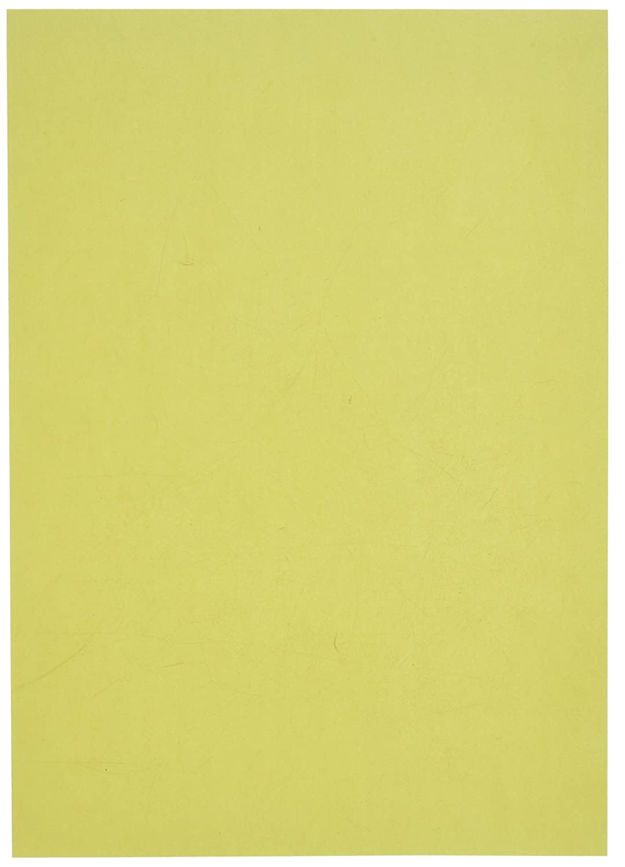 Pergamano Parchment Paper, Fantasy Leaf Green 61587