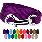 Country Brook Petz - Vibrant 22 Color Selection - 3/8 Inch Nylon Dog Leash