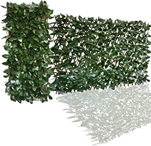 Ralph Expandable Faux Ivy Fence,Artificial Privacy Screen Decor for Outdoor Wall, Balcony and Patio, Single Sided Leaves (2, Apple)