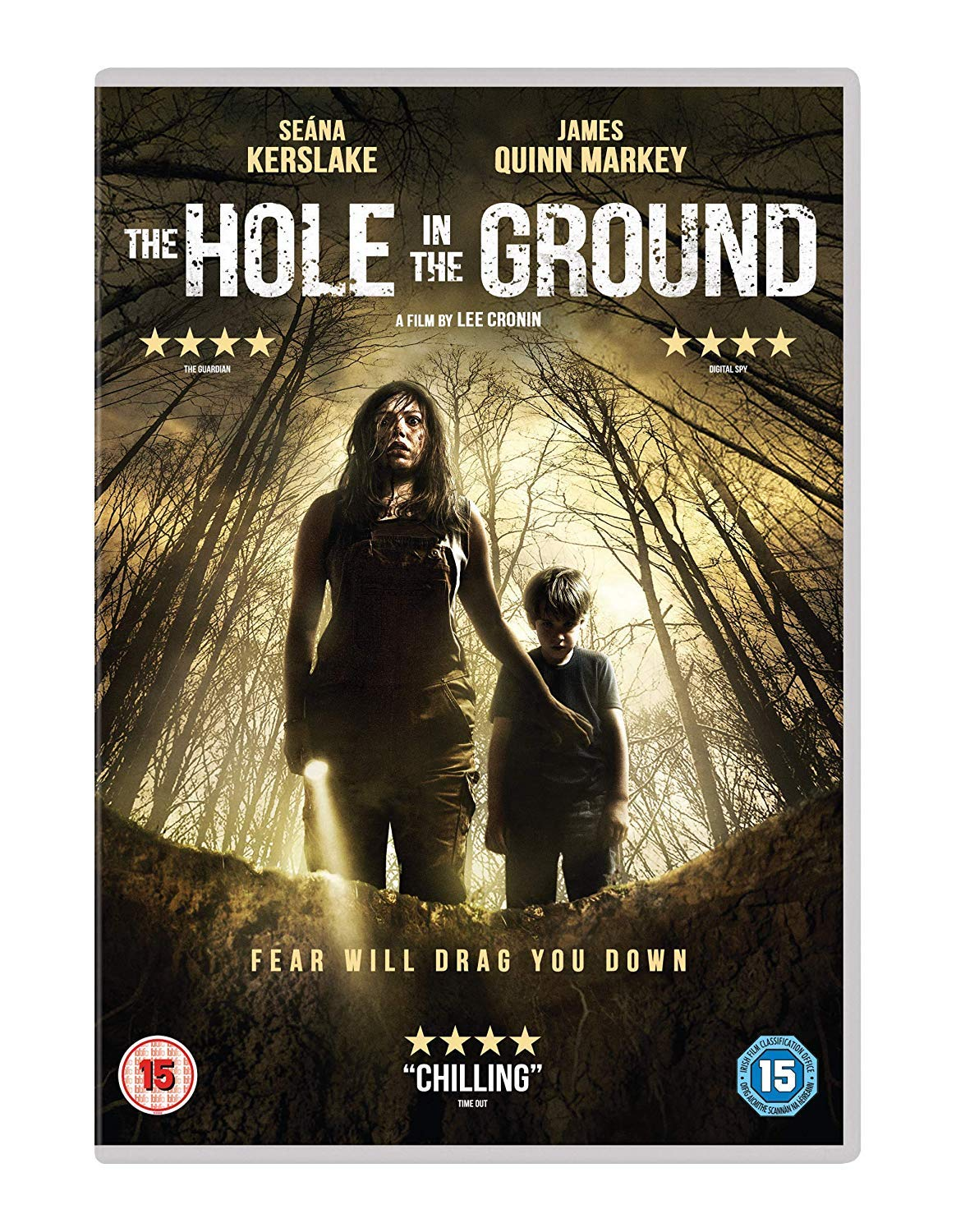Image result for The Hole in the Ground movie poster