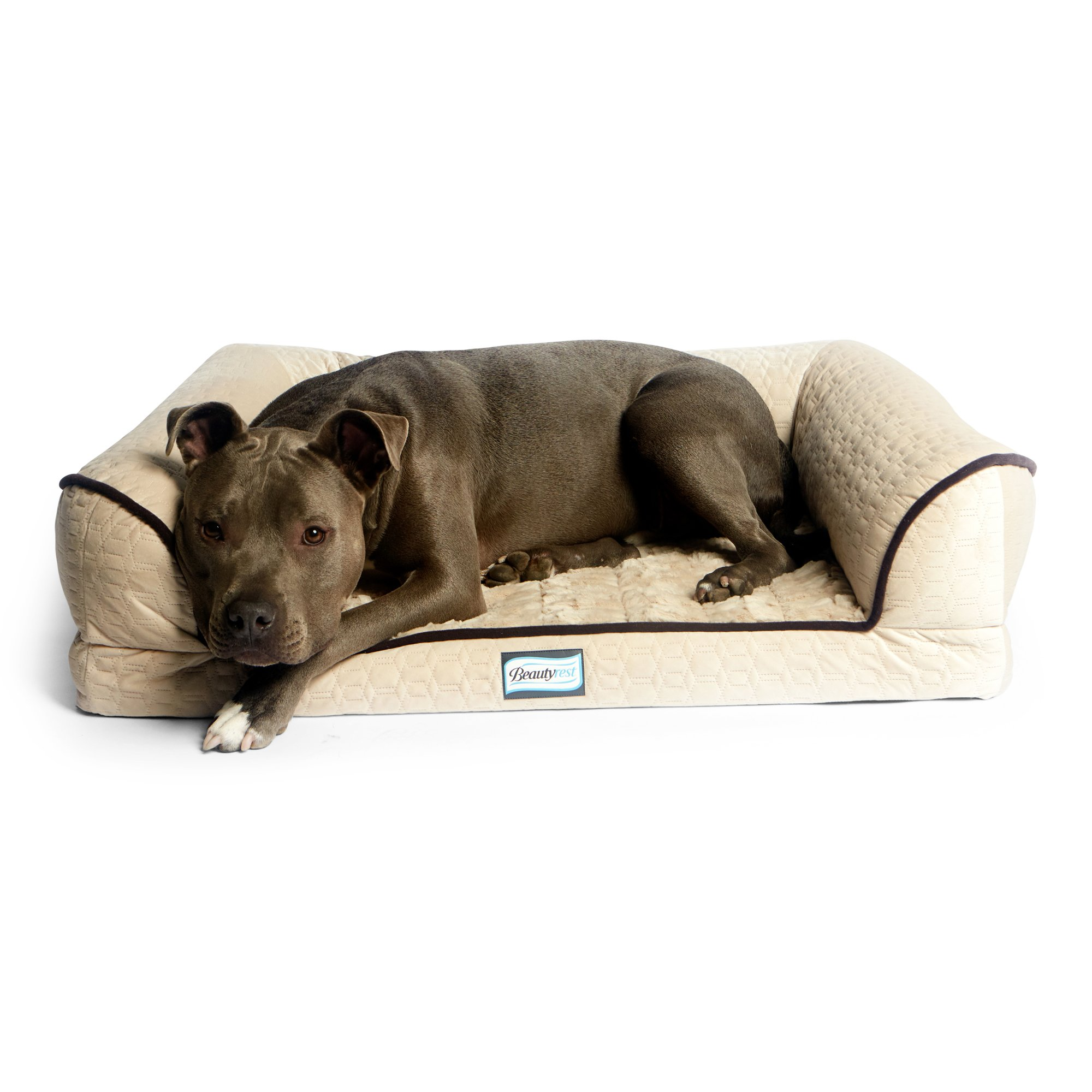 Simmons Beautyrest Dreamy Couch Orthopedic Dog Bed