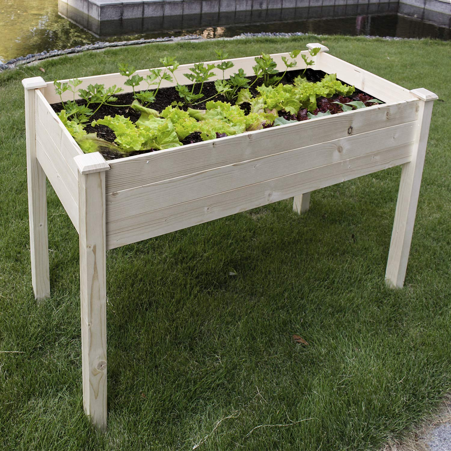 COZUHAUSE Solid Wood Raised Garden Bed for Vegetable Flower Fruit 48 L 22 W 30 H Box Nature Wood 30