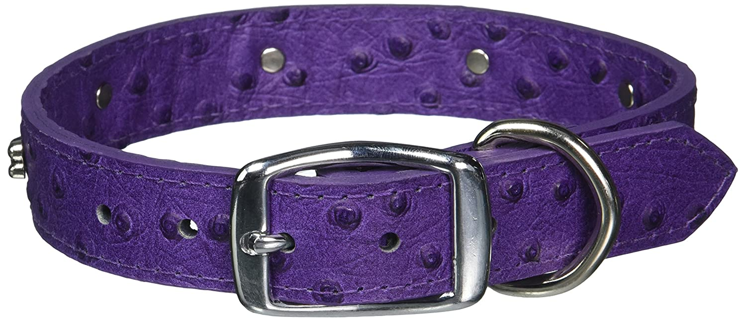 OmniPet Faux Ostrich Signature Leather Dog Collar with Bone Ornaments, African purple, 22