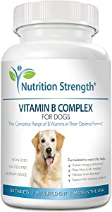 Nutrition Strength Vitamin B for Dogs, Complete B Complex for Dogs, Promote Blood Cell & Nervous System Health, Help Sustain Cellular Energy Production & Maintain Brain Function, 120 Chewable Tablets