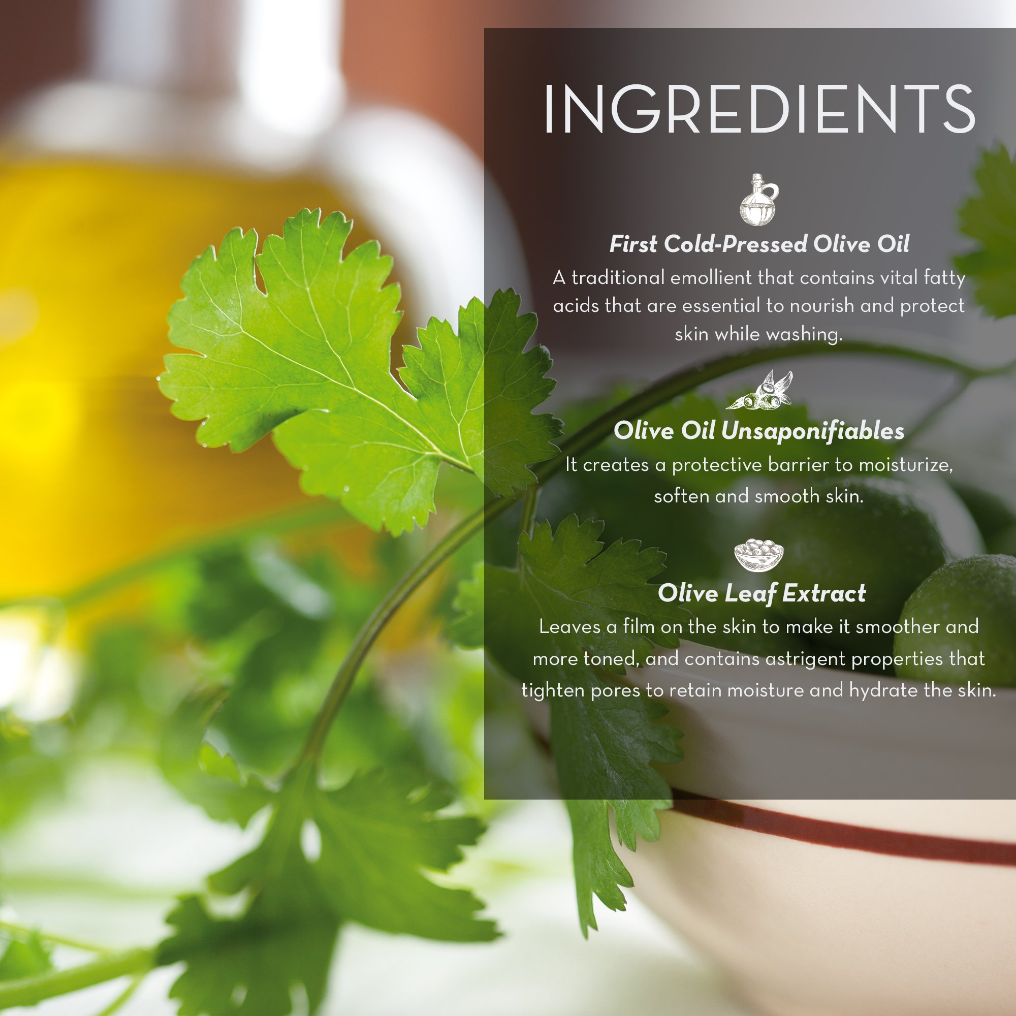 Coriander and Olive Oil Regenerating Hand Cream by Fruits & Passion (Image #3)