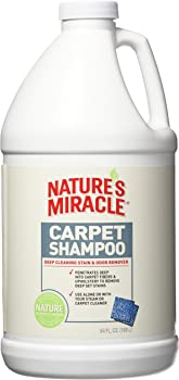Nature's Miracle Stain & Odor Remover Carpet Shampoo 64-Ounce