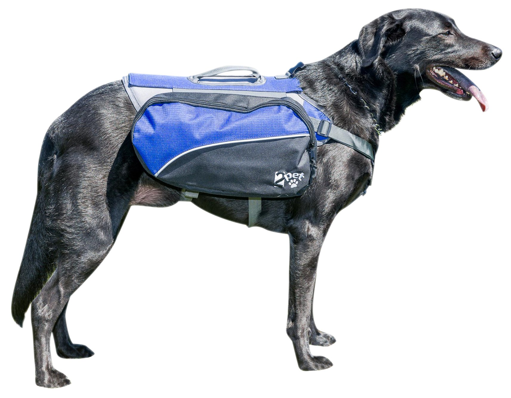 Dog Backpack for Hiking by 2PET Compact Dog Saddlebag for Dogs. Adjustable Harness, Comfortable Fit-Perfect Dog Carrier Backpack with 2 Zipper Pockets & Bottle Holder for Outdoor Activities Large Blue