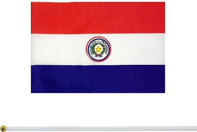 Paraguay International  3x5 Polyester Flag