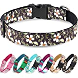Taglory Unique Designer Soft Dog Collar, Western Collars for Puppy Small Medium Large Dogs