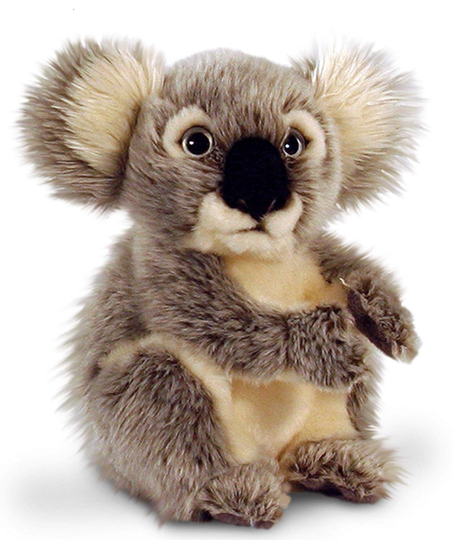 Amazon.com: Keel Toys Ours en peluche koala – Peluche assis env. 28 cm: Toys & Games