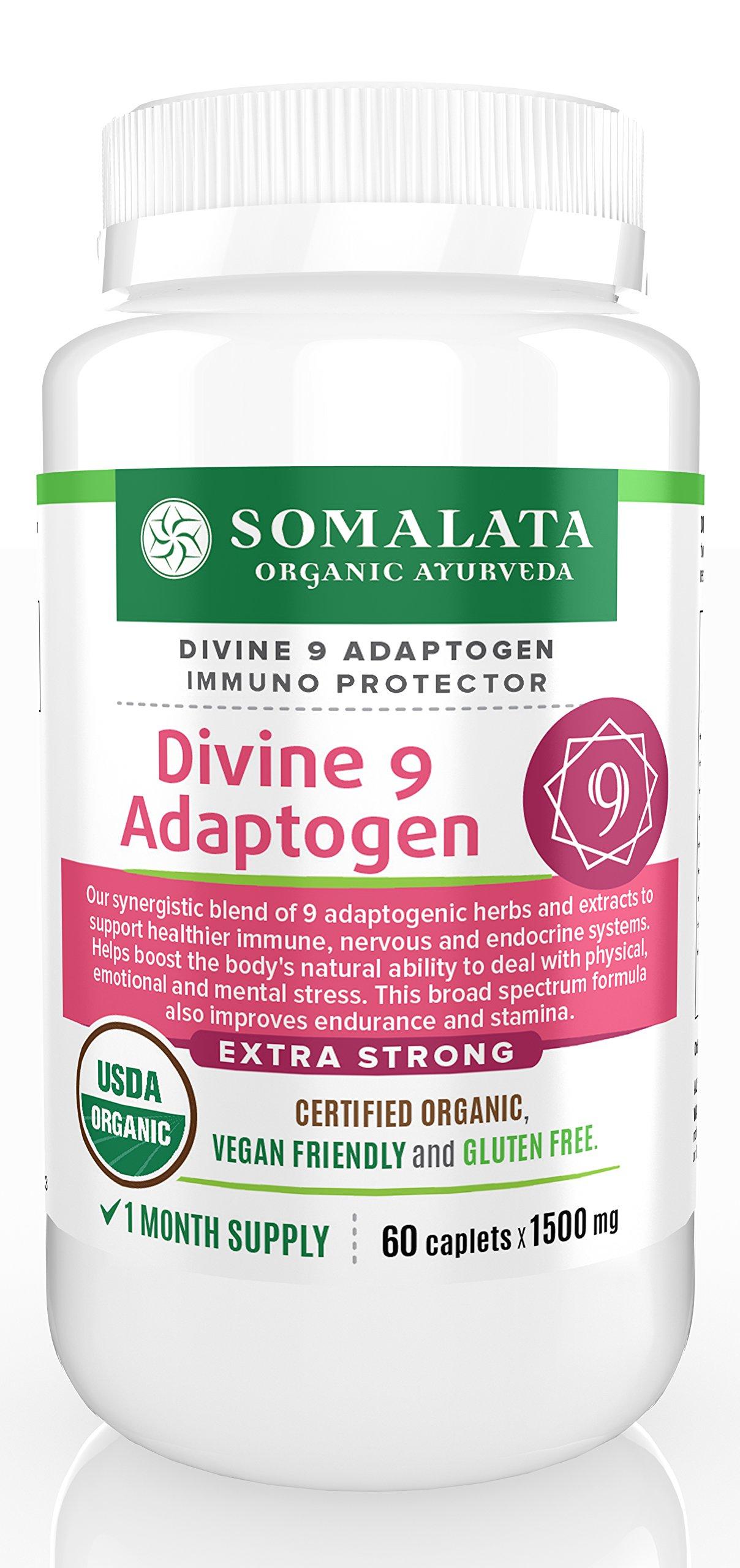 Divine 9 Adaptogen - Herbal Adrenal Support - Immune System Boost - Organic - 1500 mg