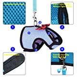 RYPET Guinea Pig Harness and Leash - Soft Mesh