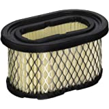 Stens 100-184 Air Filter Replaces Briggs & Stratton 497725S 4197 497725