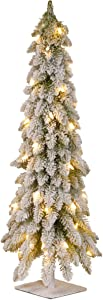 National Tree Company Pre-lit Artificial Mini Christmas Tree | Includes Pre-strung White Lights and Stand | Snowy Downswept Forestree - 4 ft