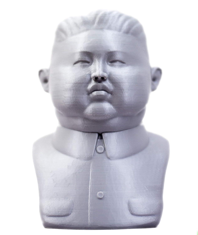 Edge3D Kim Jong Un 3D Printed Replica Bust Statue for Home Decoration, Model, Sculpture, Political Decoration, Satire (20CM/8 Inch Tall)