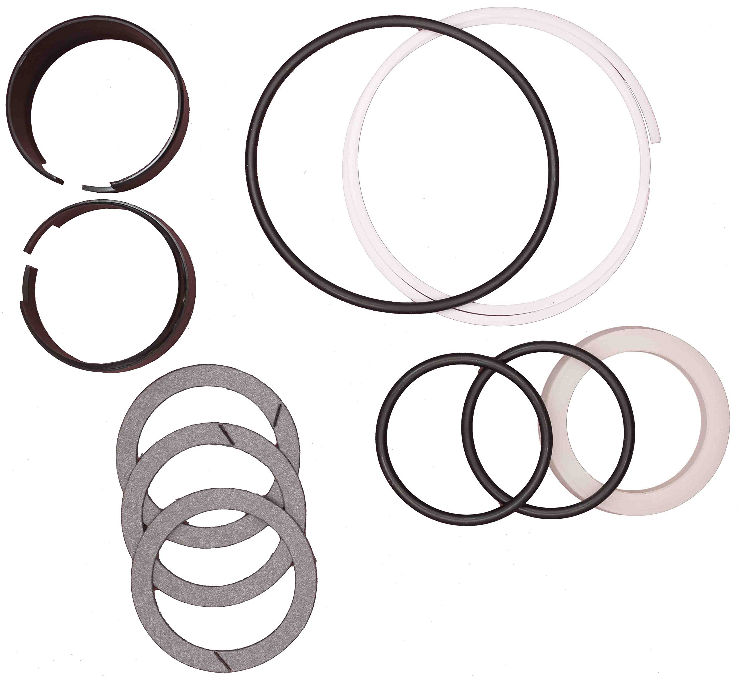 CASE D42873 HYDRAULIC CYLINDER SEAL KIT