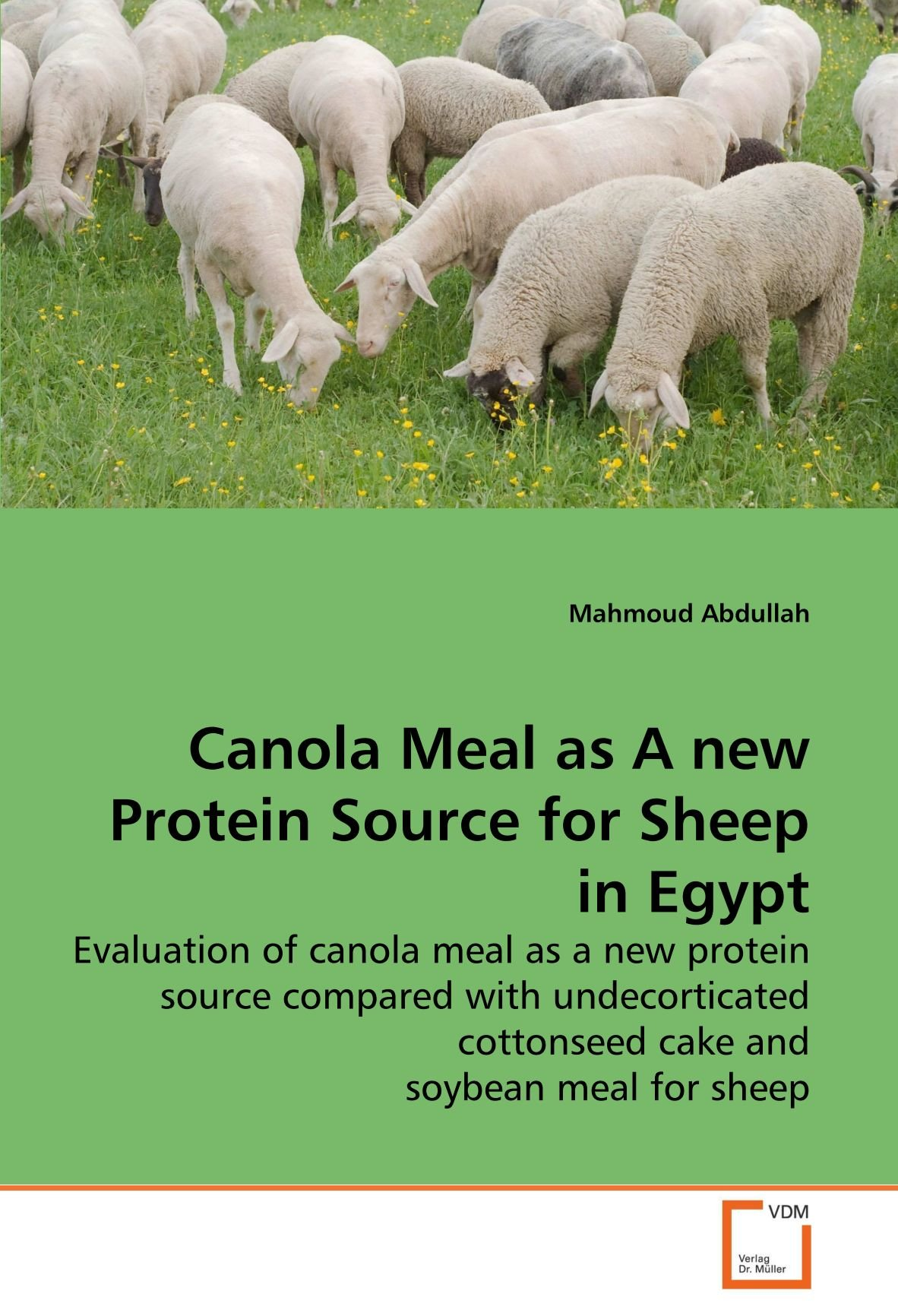 Canola Meal as A new Protein Source for Sheep in Egypt: Evaluation of canola meal as a new protein source compared with undecorticated cottonseed cake and soybean meal for sheep PDF