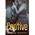 Captive (Fire on Ice Book 2)