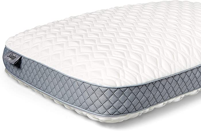 Sealy Molded Memory Foam Pillow, Standard, White