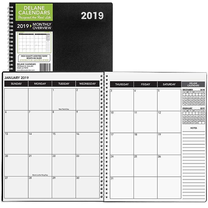 Delane 2019 Monthly Daily Planner Calendar