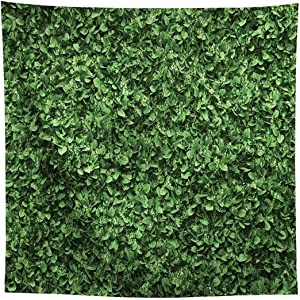 Allenjoy 8x8ft Fabric Green Leaves Backdrop(Not Artificial Grass) for Photo Studio Photography Still Life Grass Leaf Floordrop Picture Background Summer Party Decor Outdoorsy Theme Shoot Props Drop