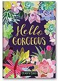 Orange Circle Studio 17-Month 2018 Monthly Pocket Planner, Hello Gorgeous Succulents