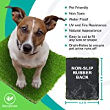 SavvyGrow Artificial Grass for Dogs AstroTurf-Rug - Premium 4 Tone Synthetic Green Astro Turf, Easy to Clean with Drain Holes - Soft Fake Turfs for Dog, Cats, Patios - Non Toxic 3.3 x 5 ft Door Mat