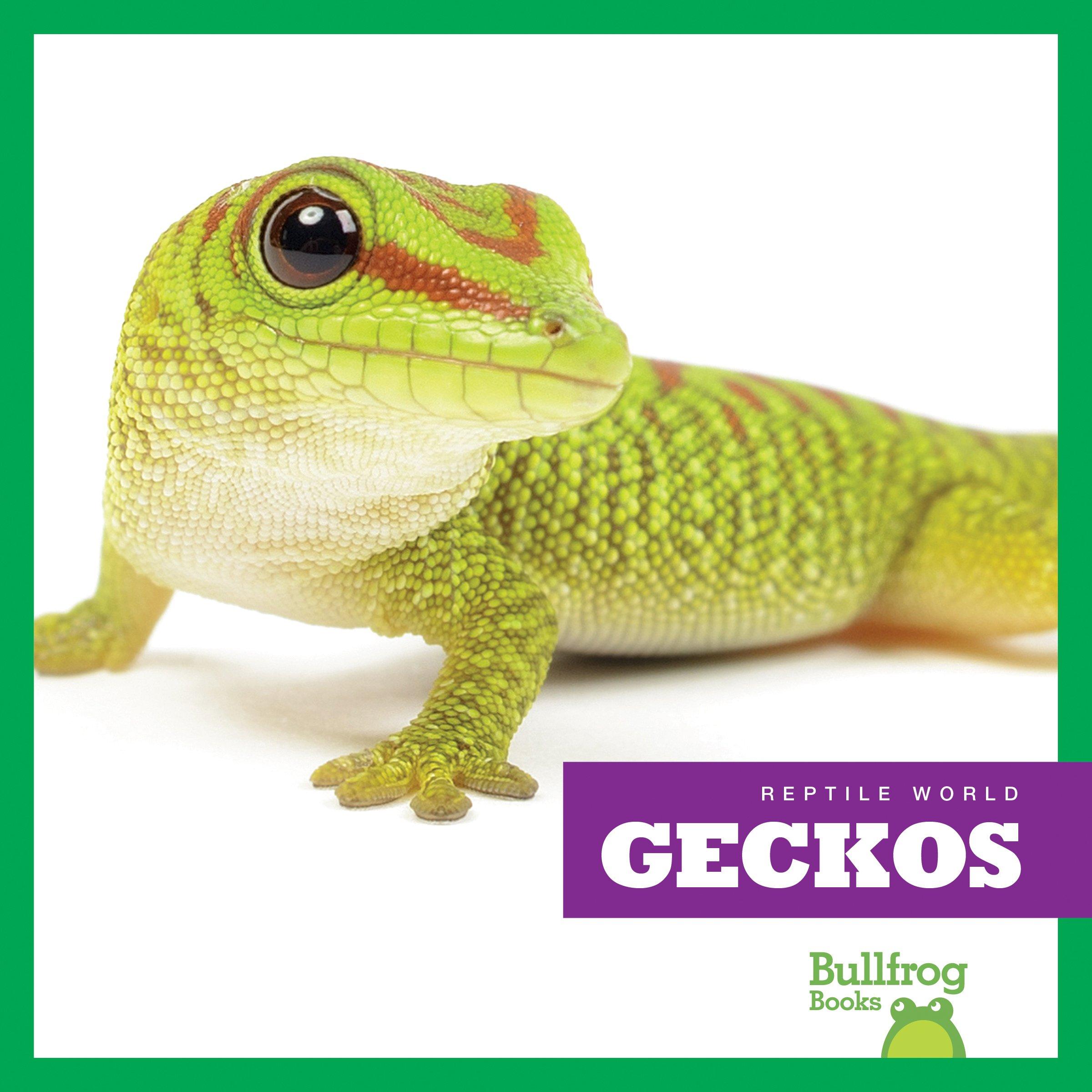 Download Geckos (Bullfrog Books: Reptile World) pdf