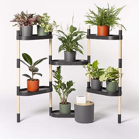 Citysens - Estantería para Plantas con riego automático, Negra, 6 bandejas