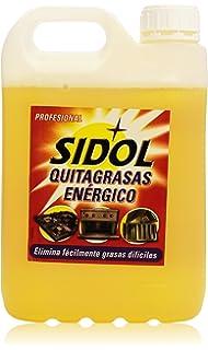 Asevi Profesional 26161 - Quitagrasas concentrado, 5 kg ...