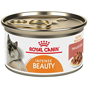 Royal Canin Feline Health Nutrition Intense Beauty Thin Slices in Gravy Canned Cat Food, 3 Ounce Can (Pack of 24)