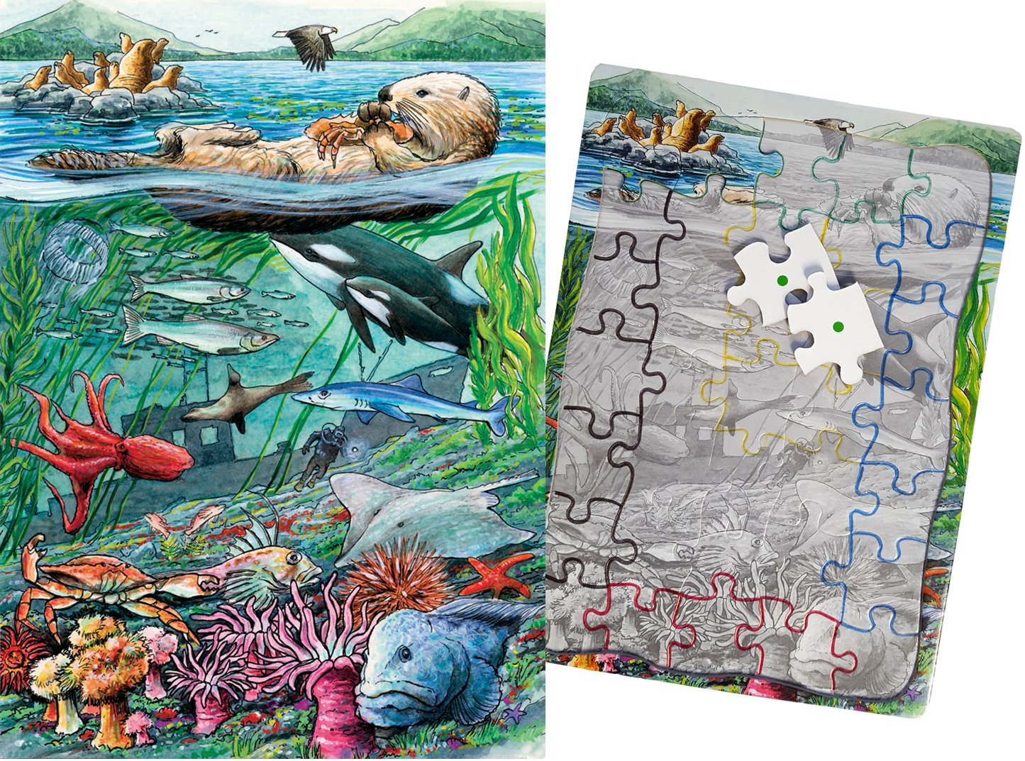 Keeping Busy Life on The Pacific 35 Piece Sequenced Jigsaw Puzzle Engaging Activities / Puzzles / Games for Dementia and Alzheimer's for Older Adults